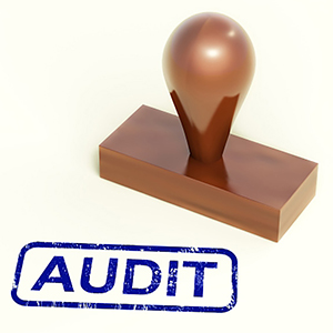 City of Riverside Plans Audits of All Departments on Rotating Basis