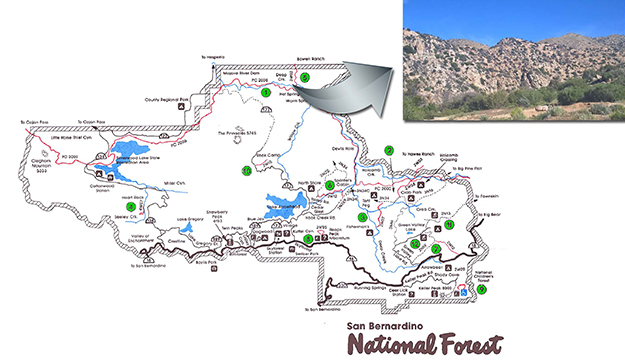 sb_national_forest
