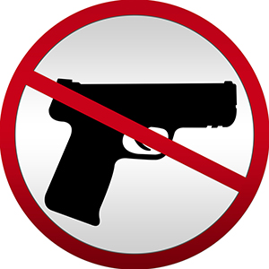 State Assembly/Senate gun control legislation could shortcut November gun control initiative