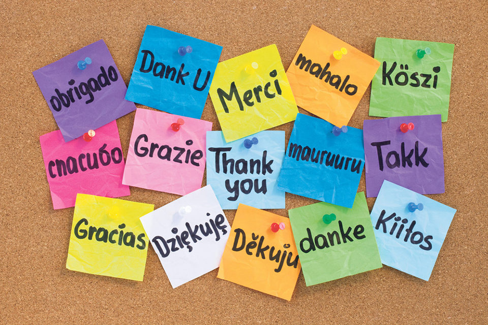 The Renewed Battle Over Bi-lingual Education