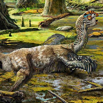 china_dinosaur