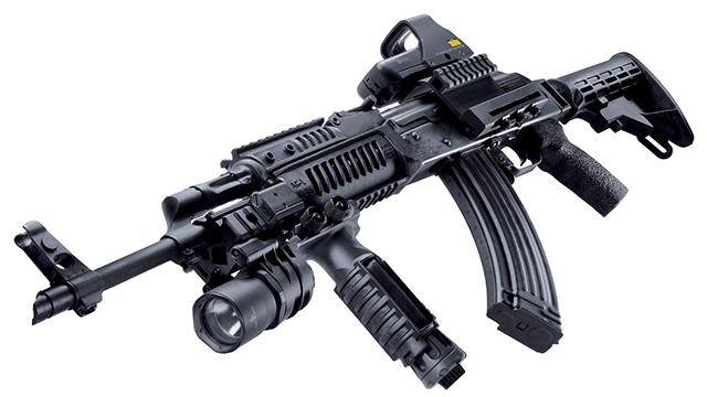 Guns for America's Mentally Ill?