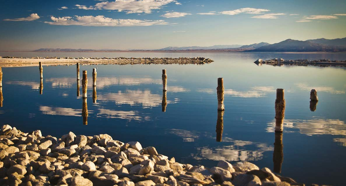 Saving Salton Sea