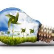 San Bernardino County Revising Renewable Energy Provision
