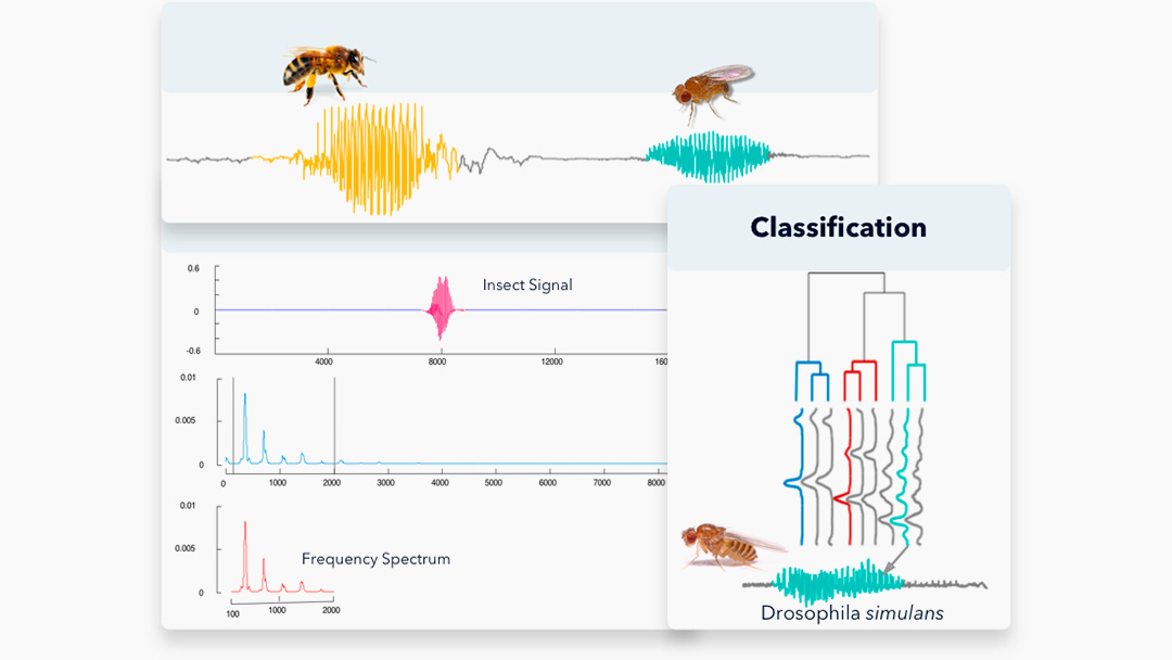 FlightSensor—The Next Generation of Insect Monitoring