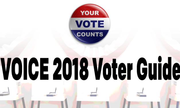 2018 VOICE Voter Guide