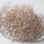 Gigantic Tumbleweeds
