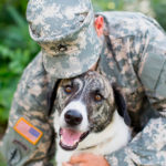 Free Pet Adoptions for Veterans