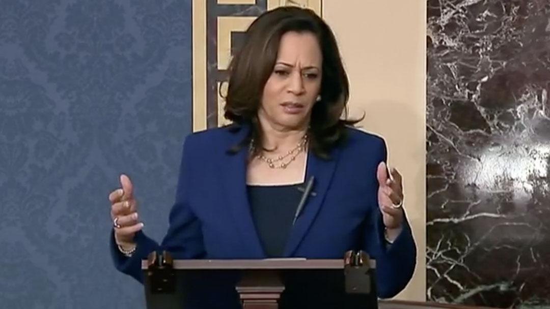 Senate Democrats Criticize Republican Policing Bill